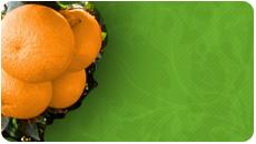 Flan de naranja: Receta fácil 3